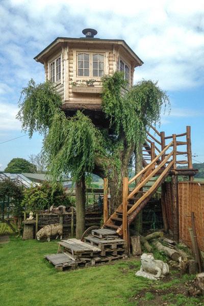 英老人花8000英镑建造完美树屋 景色迷人受当地人青睐